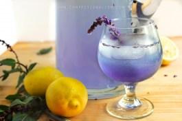 Coconut-Lavender-Lemonade-3-e1403963389698