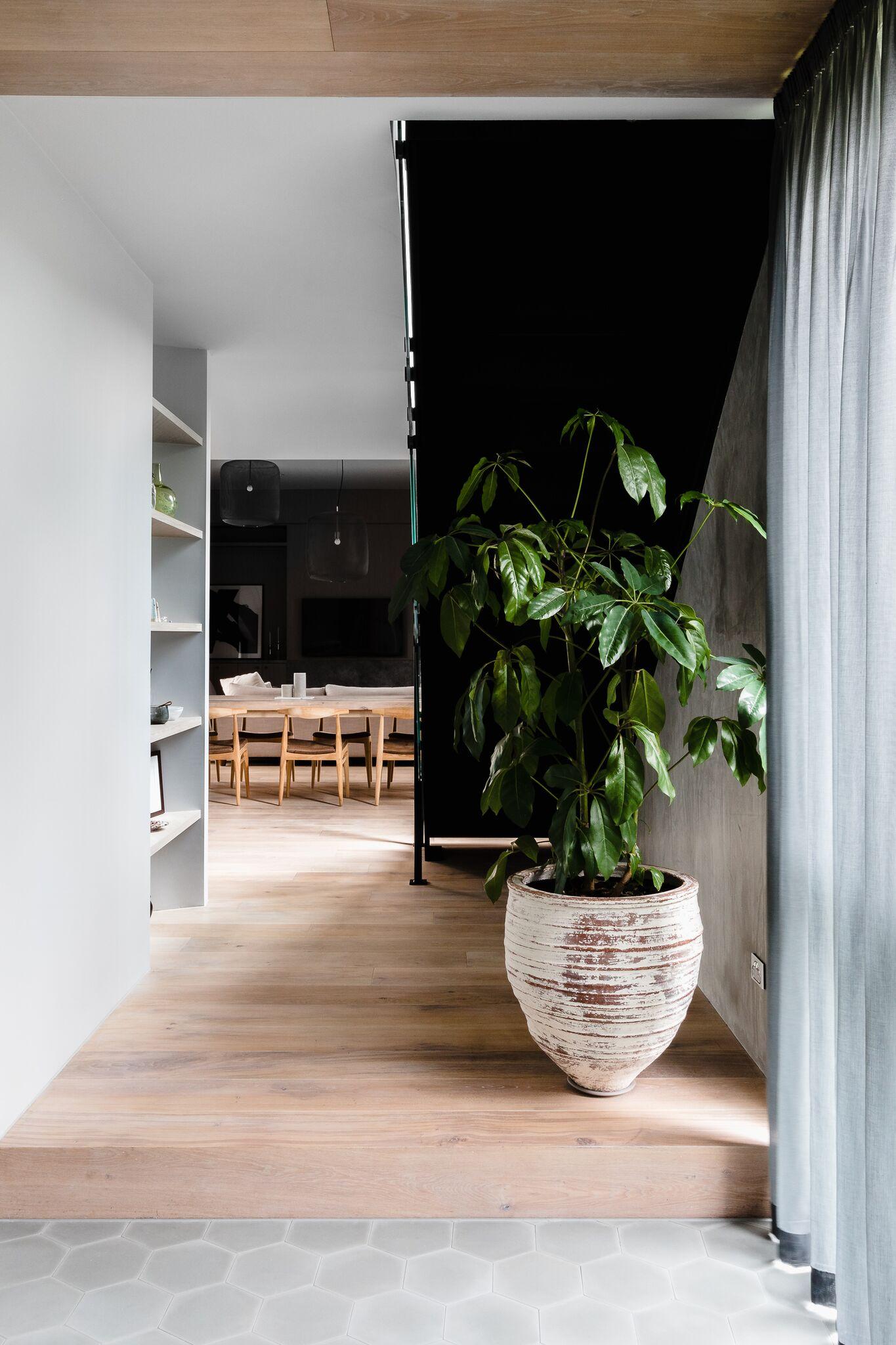 Gallery Of Balwyn Home By Studio Ezra Local Australian Interior Architecture Balwyn, Melbourne Image 6