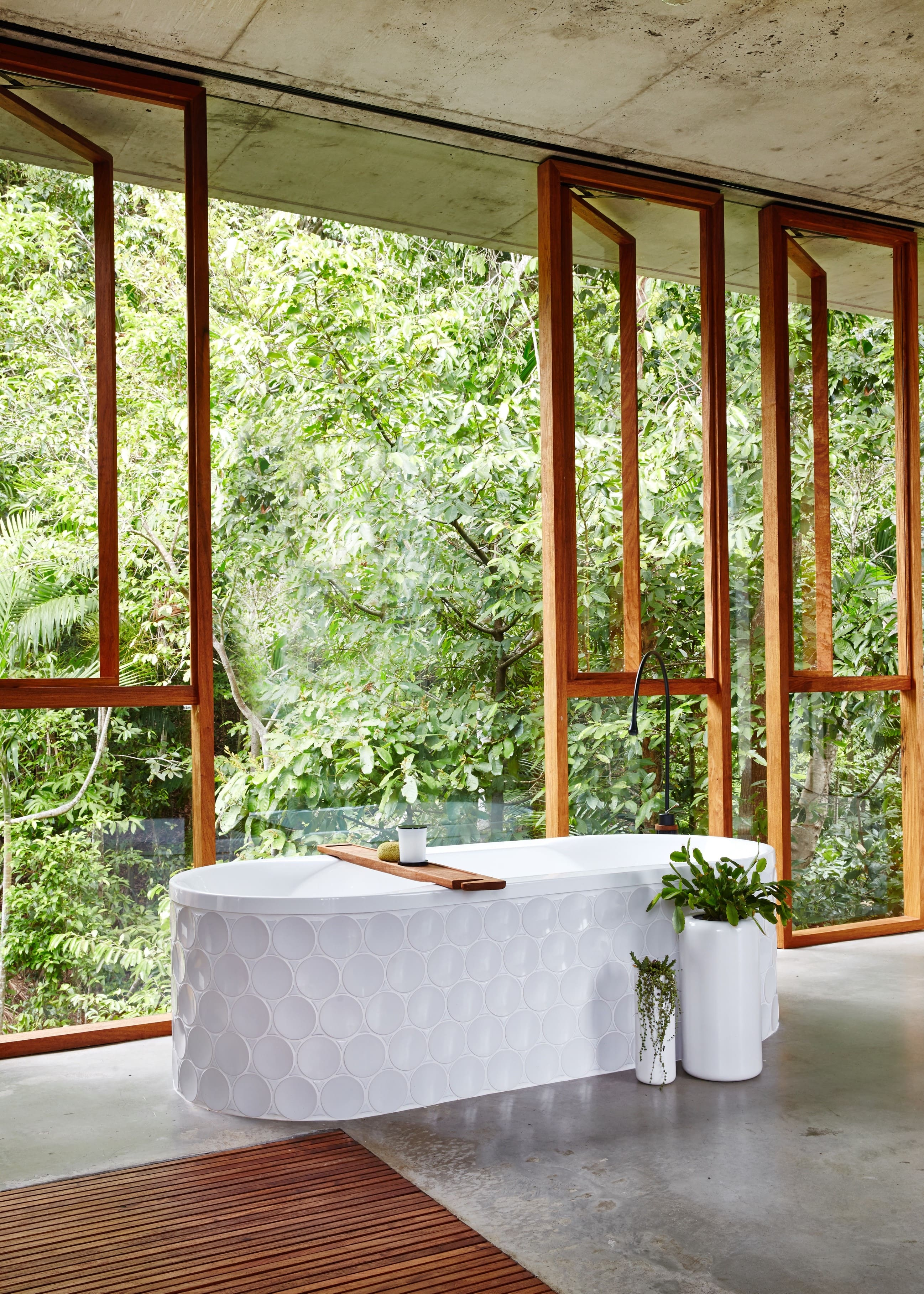 These Observations Led To Many Insights That Helped To Guide The Design Features Of Planchonella House