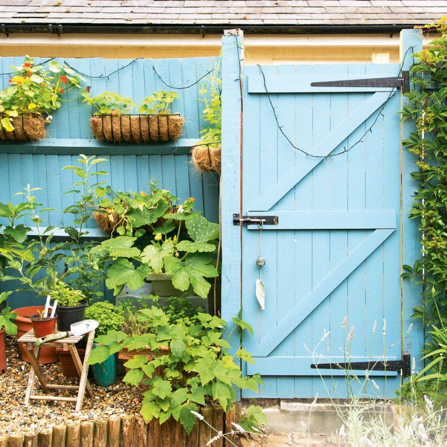 home improvement catalog have a million dollar backyard look at