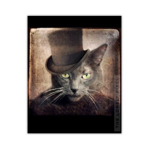 Russian Blue Cat Print