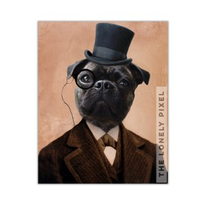 dapper pug portrait