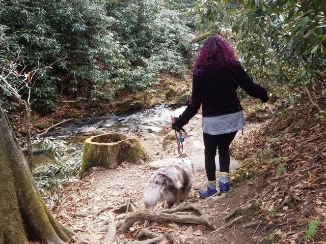 Pup Hike GBT