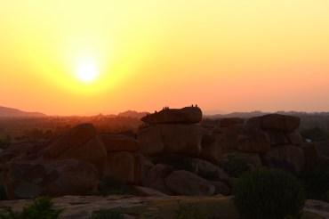 Monkeys watching the sunset, just like us