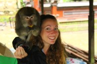 This monkey was so heavy