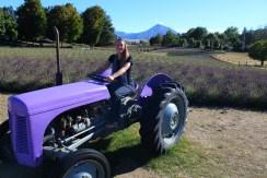 Jade 'Lavander Farmer' Hodgson