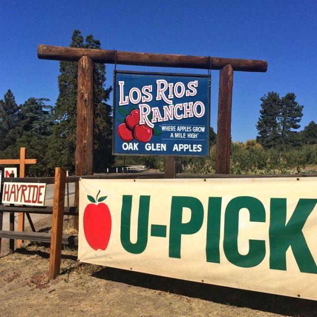 Riley's Los Rios Ranch in Oak Glen (photo by Nikki Kreuzer)