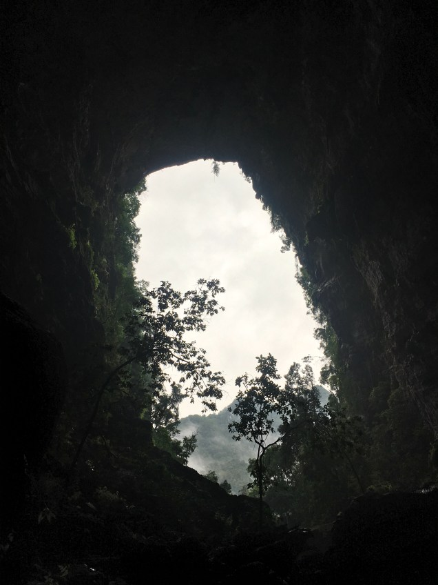 View once inside the cave looking out