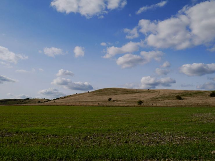 Ivinghoe Beacon and Gallows Hill