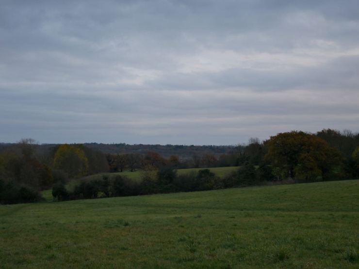 Linder's Field Buckhurst Hill