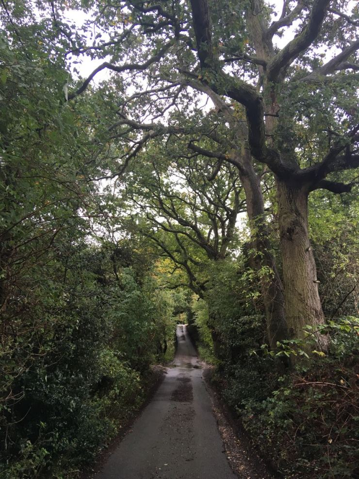 Juniper Lane, Flackwell Heath