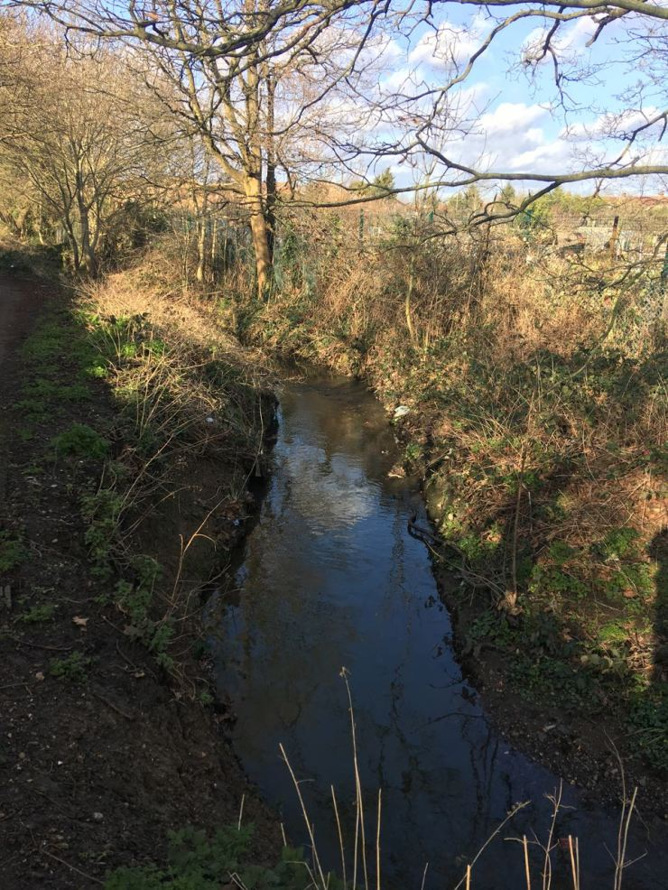 The Clitterhouse Brook
