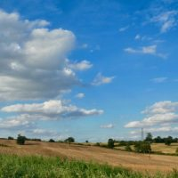 Out into the fields beyond Epping Forest