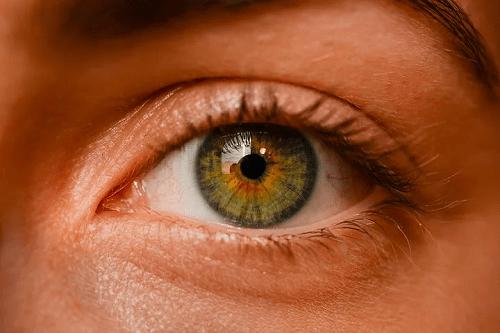 A greenish brown iris