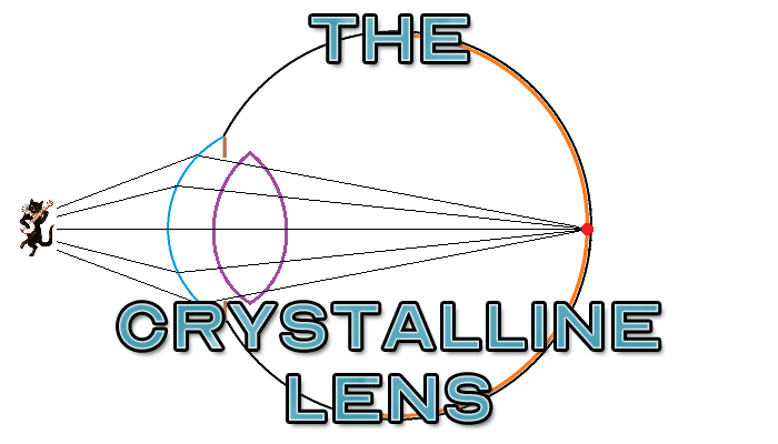 The Crystalline Lens - Featured