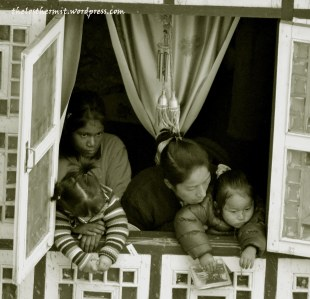 peeking out of windows