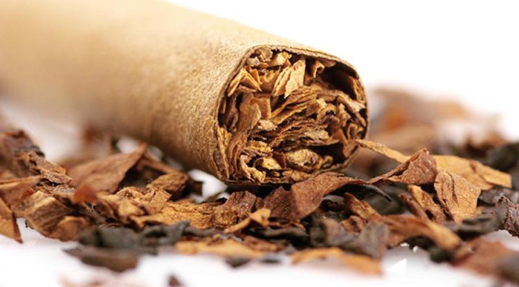 Sumber: tobaccopub.net