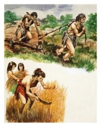 peter-jackson-stone-age-farming_i-G-54-5404-6ZDXG00Z