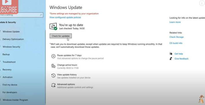 Ms windows store purge cache error windows 10