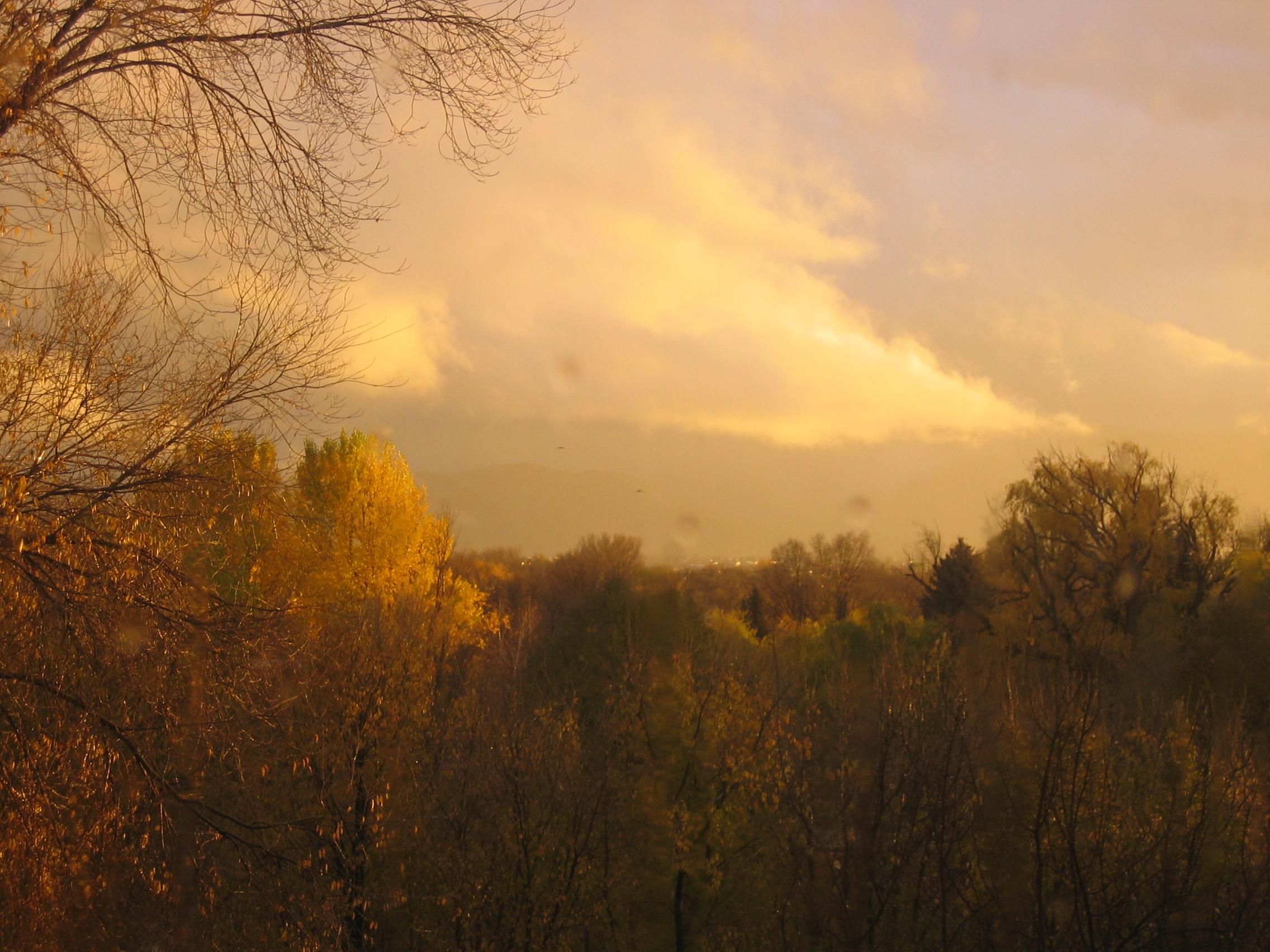 from-my-balcony-11-11-05