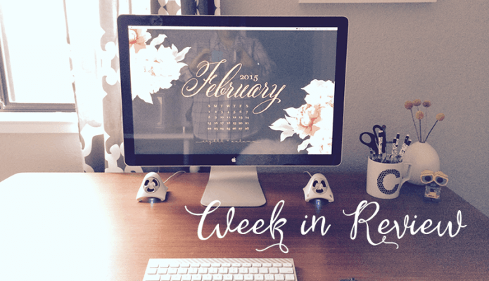 February Week in Review