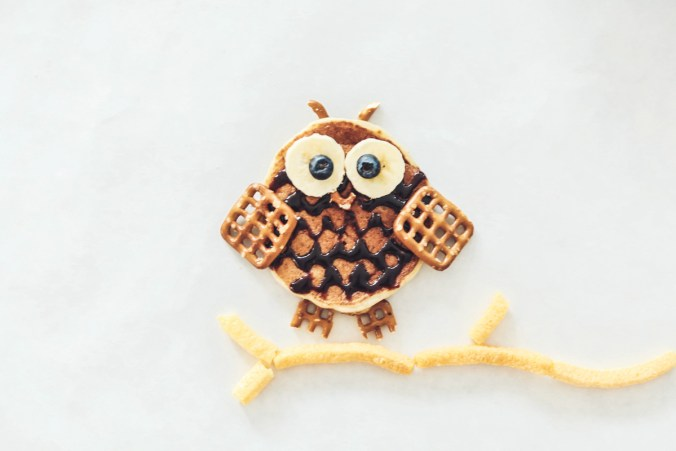 food art-owl