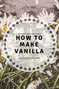 How to Make Vanilla Extract | Luxuriously Thrifty