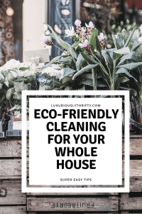 Easy Tips for Greener Cleaning | Luxuriously Thrifty