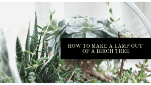 How to make a lamp out of an old birch tree | Luxuriously Thrifty