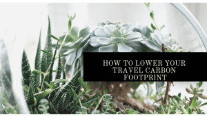 How to lower your travel carbon footprint | Luxuriously Thrifty