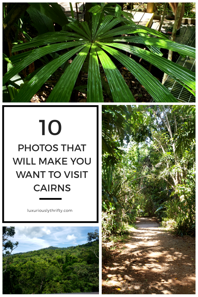 10 photos that will have you booking a flight to Cairns | Luxuriously Thrifty