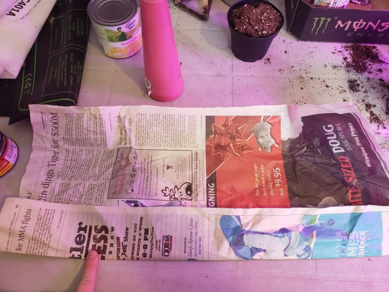 Super easy DIY! Make your own seedling pots out of newspaper | Luxuriously Thrifty
