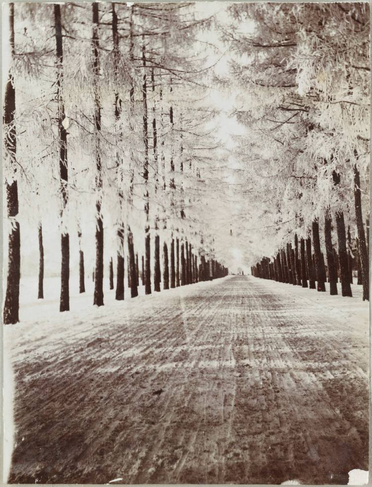 Photography from the private archive of the Romanovs family-Lujon Magazine55