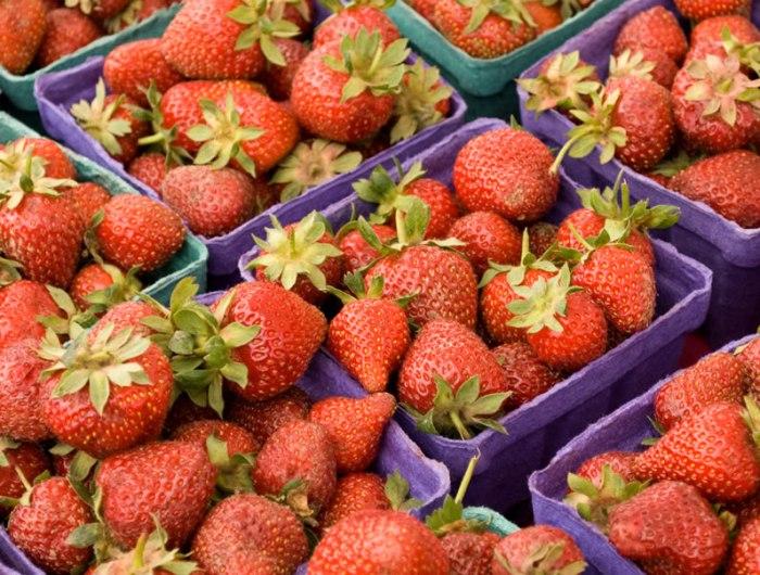 Fresh Primer: Strawberries | LunaCafe