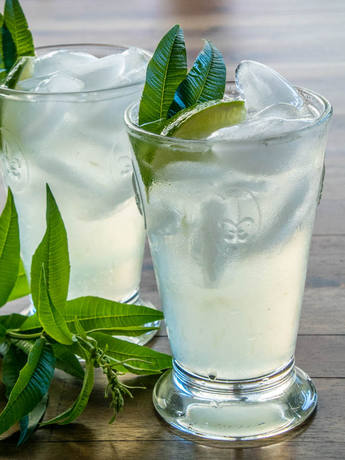 Lemon Verbena Syrup & Limeade | LunaCafe