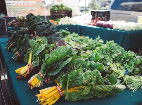 Picture of kale and rainbow chard at Everyone's Harvest Farmer's Market.