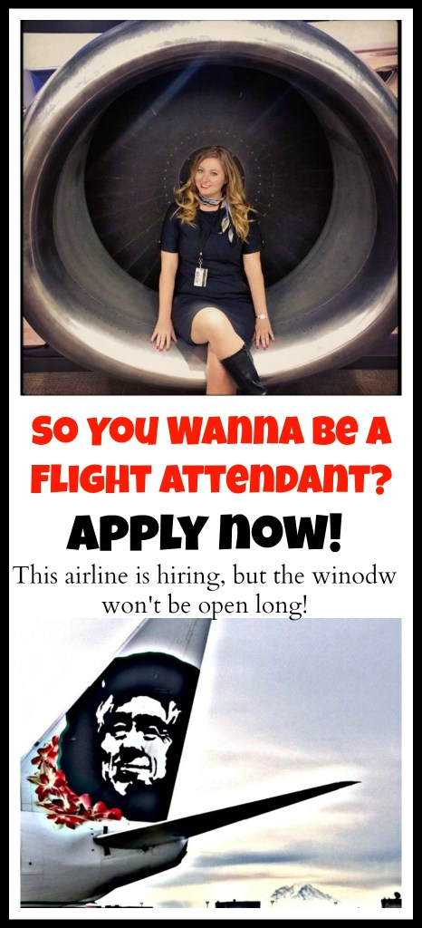 Apply to be a Flight Attendant, this Airline is Hiring