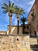 Andrew_Forbes_Restaurante_ATRIO_Hotel_caceres (24)