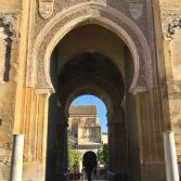 Andrew_Forbes_visits_Cordoba_Andalucia (9)
