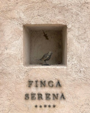 ANDREW_FORBES_FINCA_SERENA_COPYRIGHT_FORBES (6)