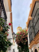 Copyright_andrew_Forbes_Marbella_old_town (4)