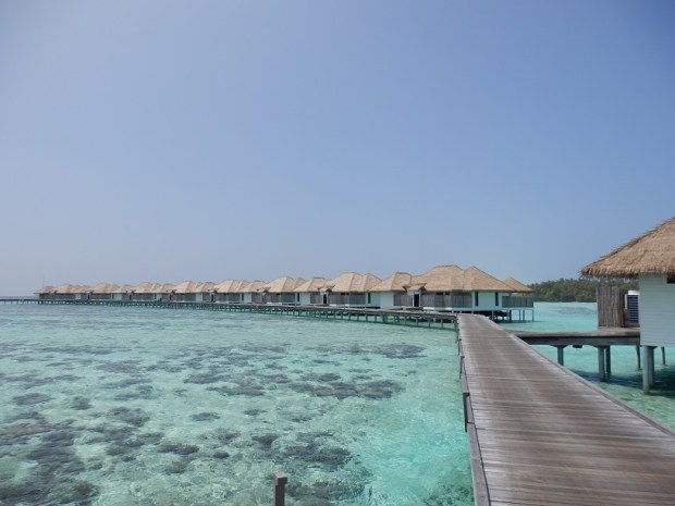 JETTY WITH VILLAS 301-320