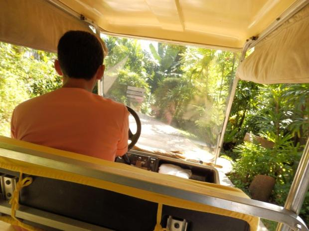 TRANSPORT IN THE RESORT IS DONE BY BUGGY