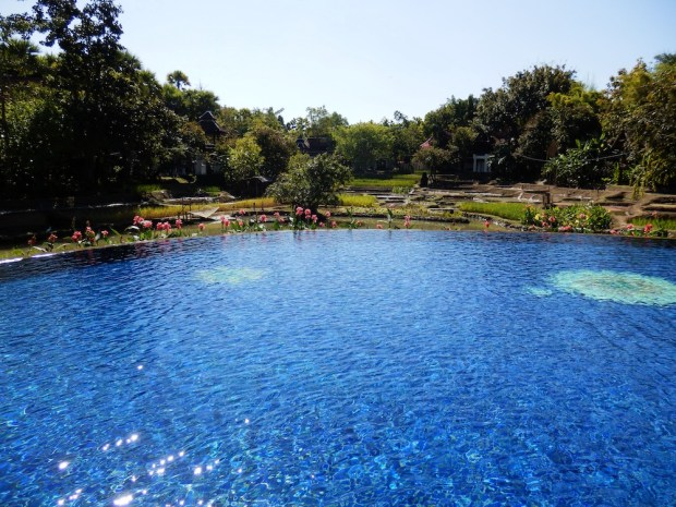 LAGOON-STYLE SWIMMING POOL