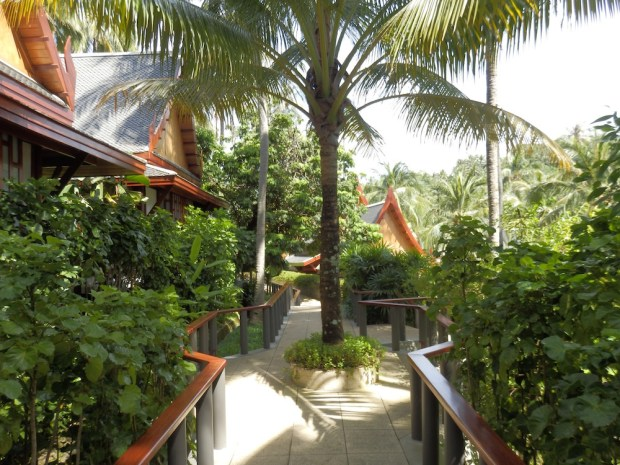 RESORT GROUNDS: WALKWAY TO ROOMS