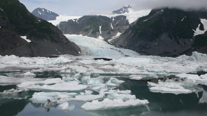 TAKE A WILDLIFE CRUISE TO KENAI FJORDS GLACIER LODGE (ALASKA)