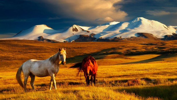 MONGOLIA IS AN EMERGING TRAVEL DESTINATION