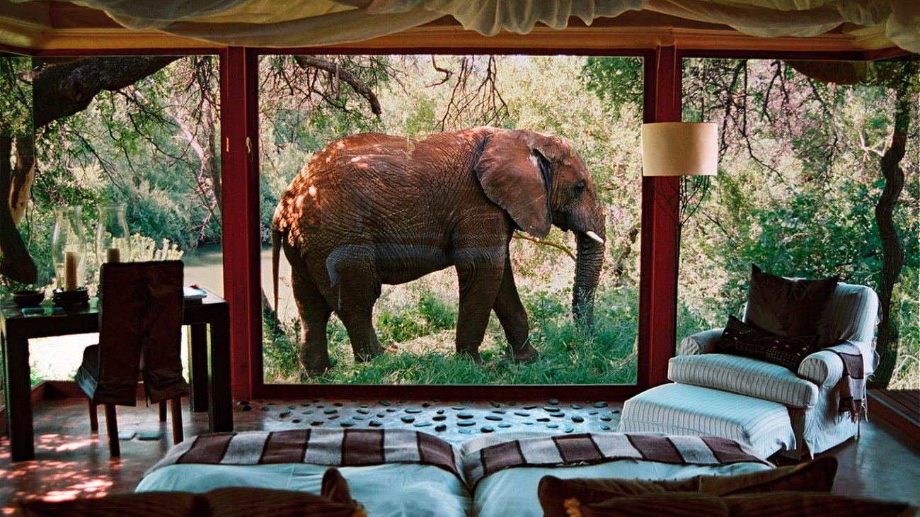 Game Reserve Eastern Cape | Luxury Game Lodge - South Africa