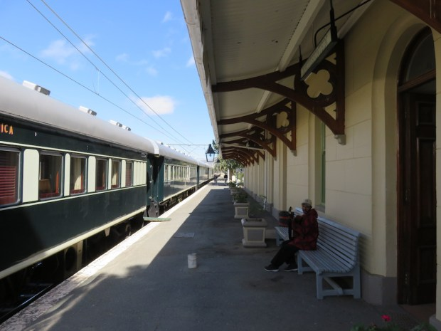 DAY THREE: MATJIESFONTEIN EXCURSION