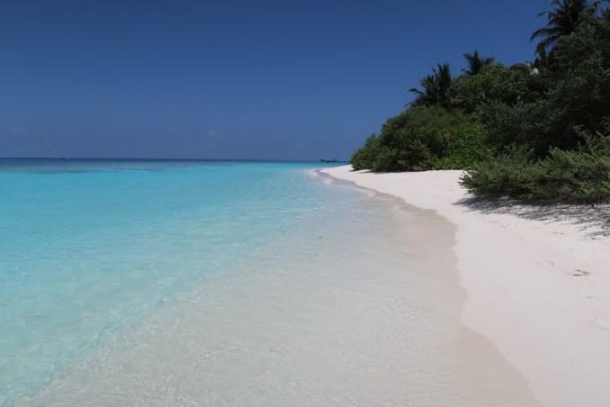 JUNGLE RESERVE: BEACH AREA
